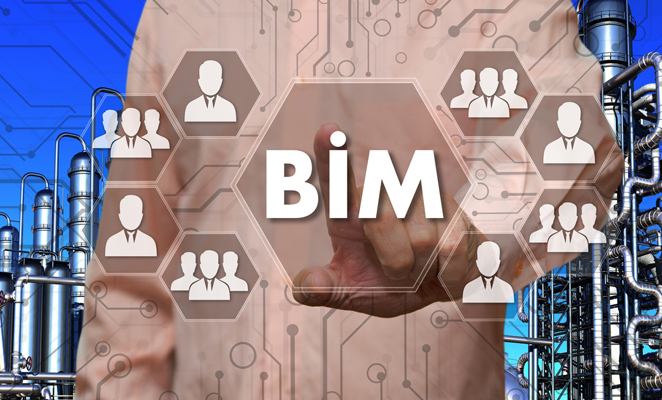"Man's finger points at ""BIM"" in hexagon shape next to other hexagons with people and groups of people evenly dispersed"