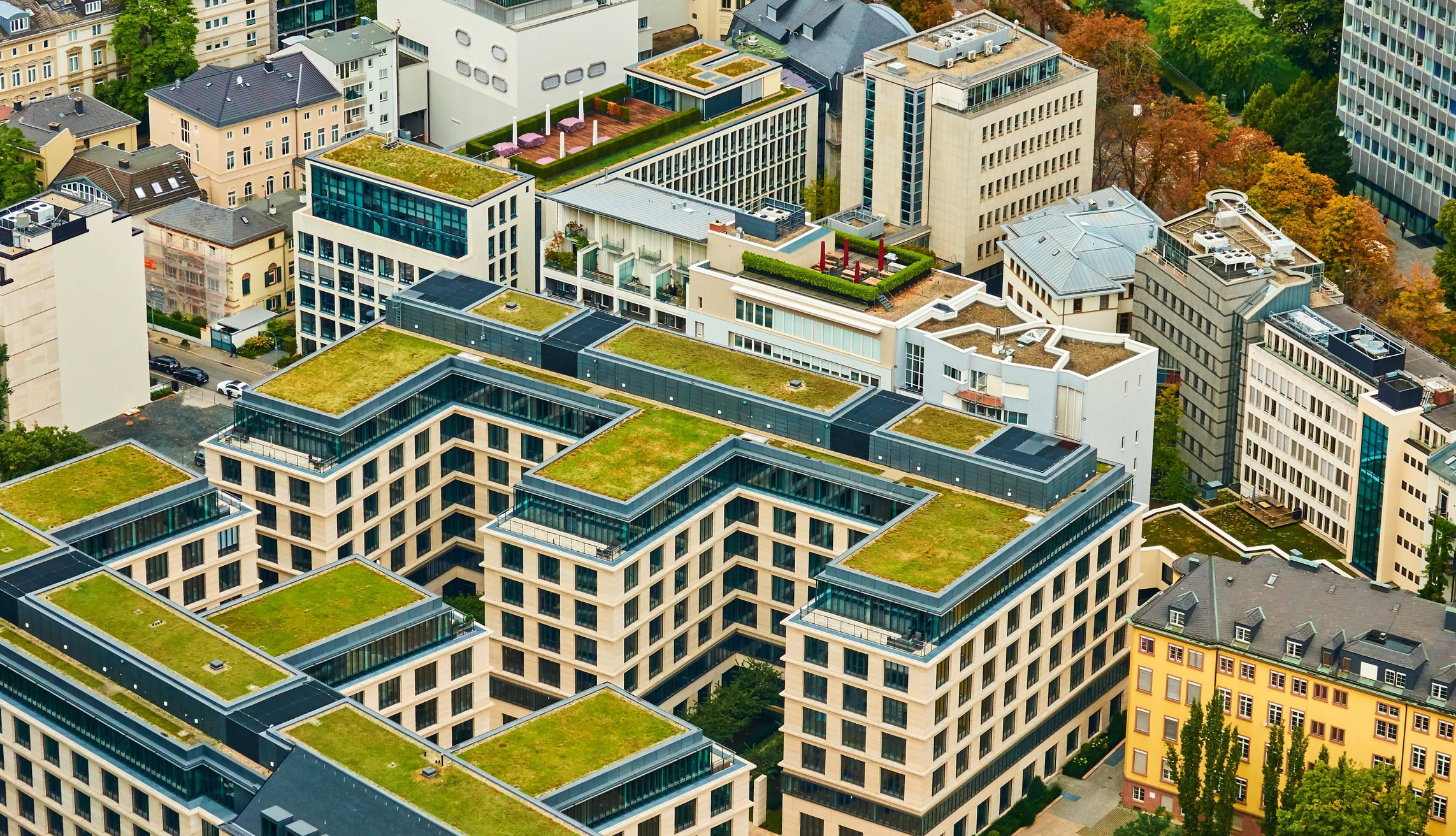 An arial view of two sustainable buildings featuring green roofs