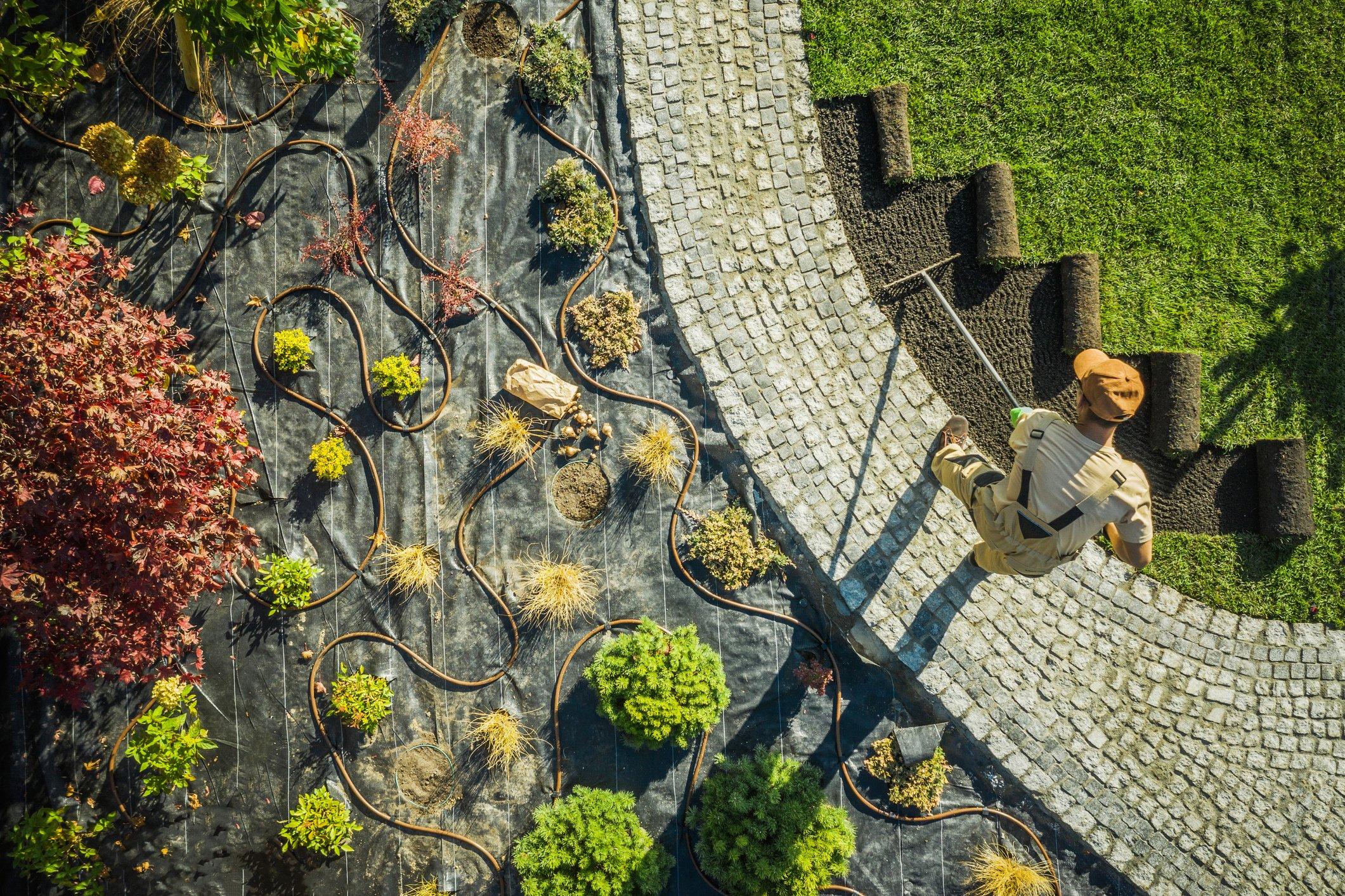 An aerial shot shows landscape technician installing sod