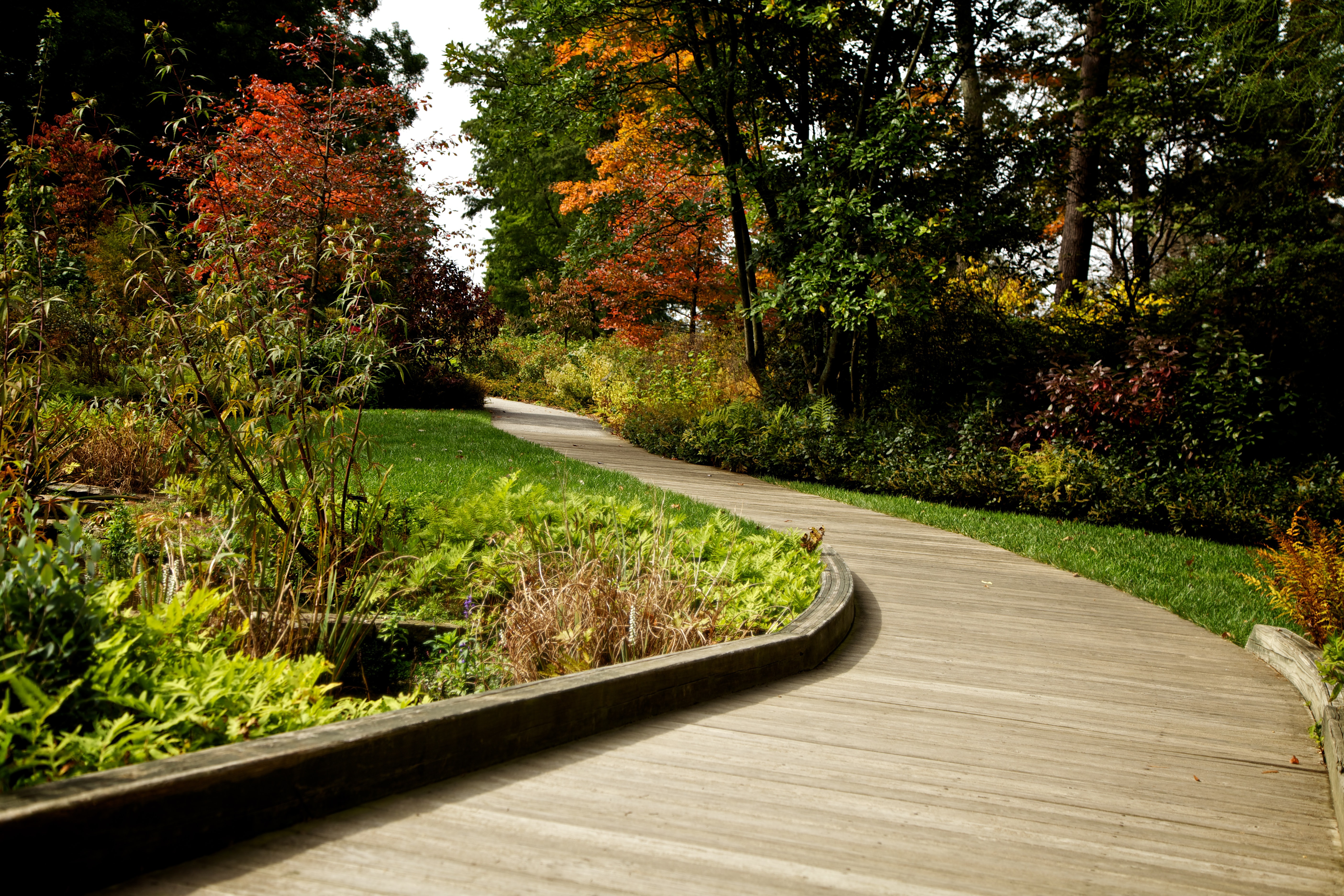 A walkway leads down path through beautifully landscaped grounds